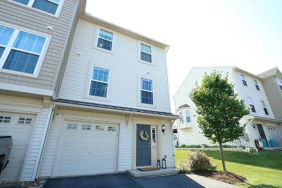 Condo/Townhouse For Sale: 167 Exeter Lane