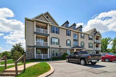 State College Condo/Townhouse For Sale: 120 Beaumanor Road #101