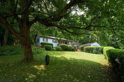 State College Single Family Home For Sale: 126 Thornton Road