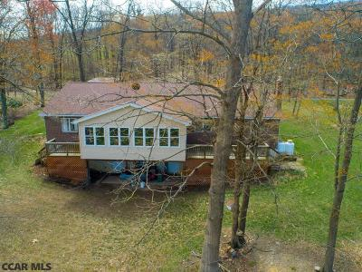 Single Family Home For Sale: 161 Tussey View Lane