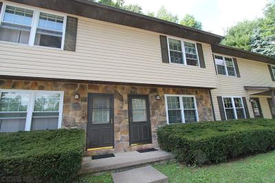 State College Condo/Townhouse For Sale: 324 Amblewood Way