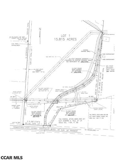 Commercial For Sale: Lot #2 Clearfield Woodland Highway