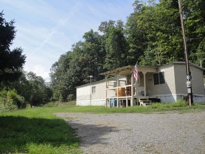 Mobile/Manufactured For Sale: 347 Fowler Hollow Lane
