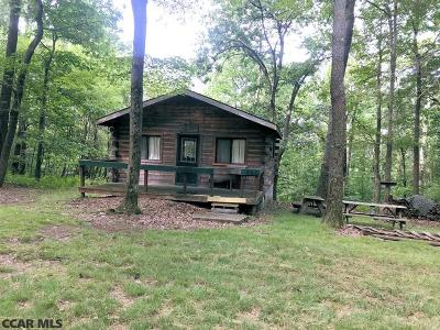 Centre County Single Family Home For Sale: 244 Snow Shoe Mountain Forest Road