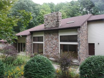 Centre County Single Family Home For Sale: 262 Blackberry Hill
