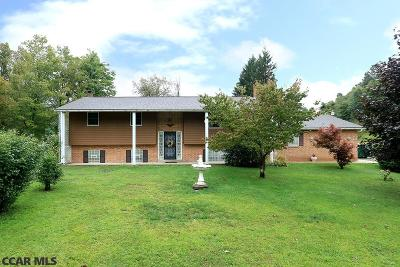 Homes for Sale Near Bald Eagle School District