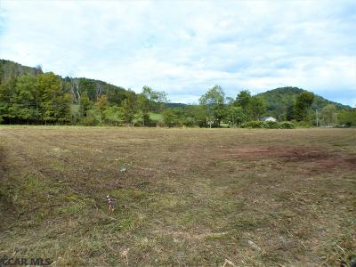 Julian PA Residential Lots & Land For Sale: $43,000