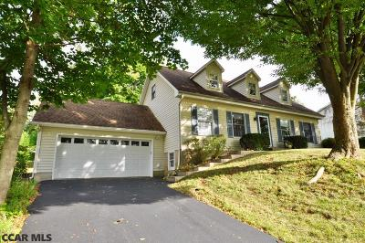 Centre County Single Family Home For Sale: 1013 Cortland Drive