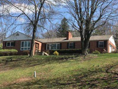 Lewistown Single Family Home For Sale: 31 Woodside Lane