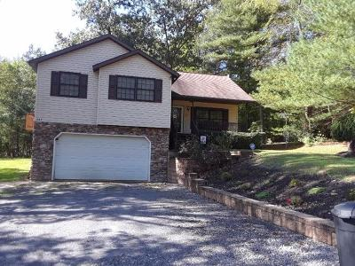 Lewistown Single Family Home For Sale: 247 Cliffside Drive
