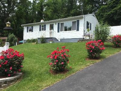 Mifflin County Single Family Home For Sale: 63 Runway Lane