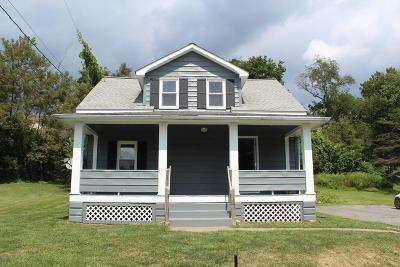 Lewistown Single Family Home For Sale: 243 Orchard Grove Ave