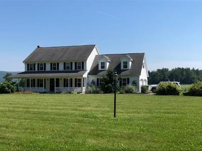 Reedsville Single Family Home For Sale: 367 Airport Rd