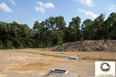 Enola Residential Lots & Land For Sale: Homesite 3 Tristan Court