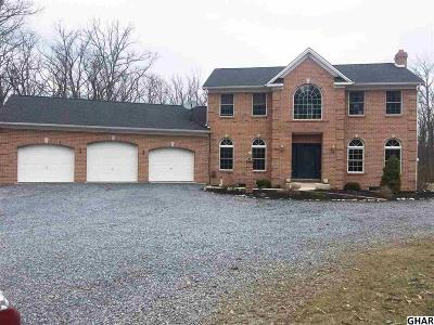 Single Family Home For Sale: 1235 Means Hollow Road