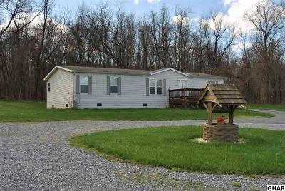 Mount Holly Springs Single Family Home For Sale: 711 Sandbank Rd