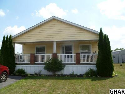 Shippensburg Single Family Home For Sale: 64 Maizefield Dr