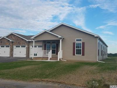 Carlisle Single Family Home For Sale: 161 Glenridge Drive