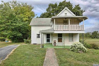 Mount Holly Springs Single Family Home For Sale: 313 Zion Road