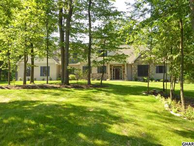 Mount Holly Springs Single Family Home For Sale: 10 Barnitz Woods Drive