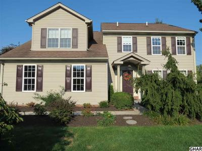 Hummelstown Single Family Home For Sale: 991 Overlook Dr