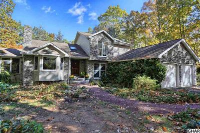 Duncannon Single Family Home For Sale: 126 N Barley Drive