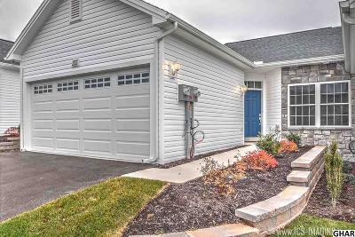 Carlisle Single Family Home For Sale: 133 Lehman Drive