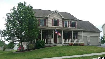 Carlisle Single Family Home For Sale: 226 Pine Creek Drive