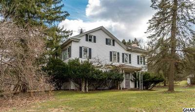 Hershey Single Family Home For Sale: 647 Sand Hill Road