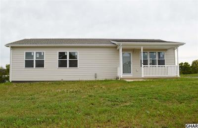 Shippensburg Single Family Home For Sale: 6 Walleye Drive