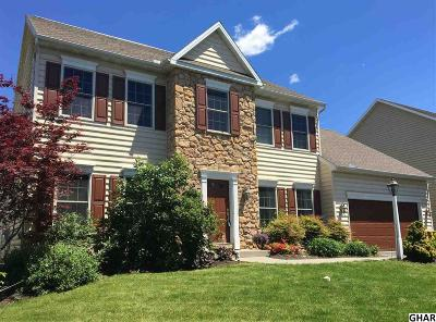Hummelstown Single Family Home For Sale: 2538 Raleigh Rd