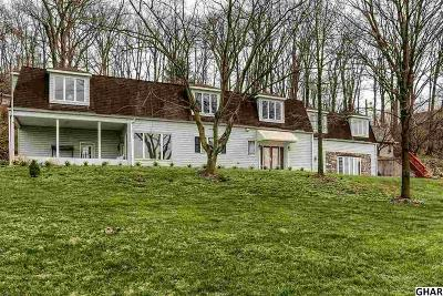 Hummelstown Single Family Home For Sale: 1236 Wood Rd