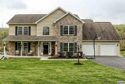New Cumberland Single Family Home For Sale: 662 Fishing Creek Rd