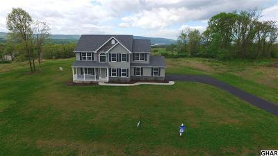 Duncannon Single Family Home For Sale: 55 Pinetree Drive