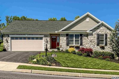 New Cumberland Single Family Home For Sale: 406 Chestnut Way