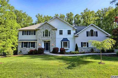 Duncannon Single Family Home For Sale: 20 Ashmar Drive