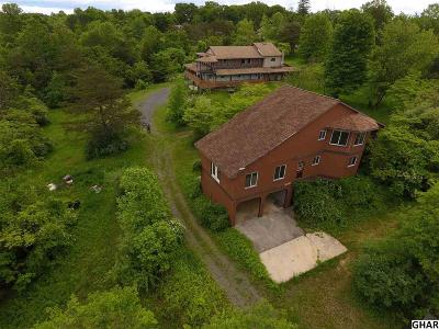Duncannon Single Family Home For Sale: 722 Newport Rd Lot 2