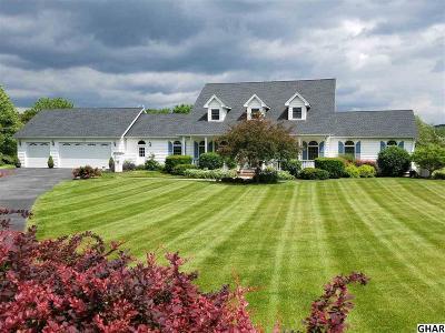 Carlisle Single Family Home For Sale: 15 E Harmon Drive