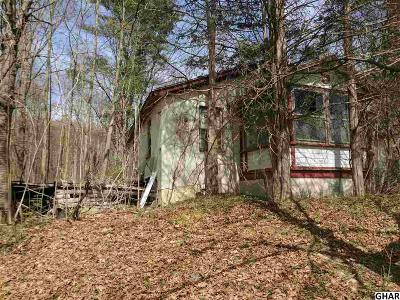 Duncannon Single Family Home For Sale: 1257-A New Bloomfield Road