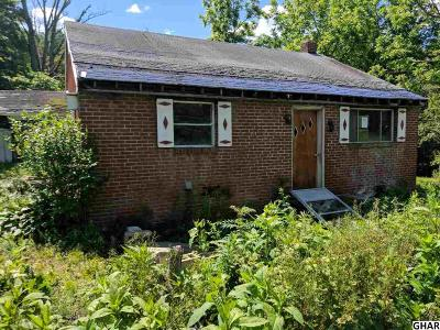 Duncannon Single Family Home For Sale: 1257-B New Bloomfield Road