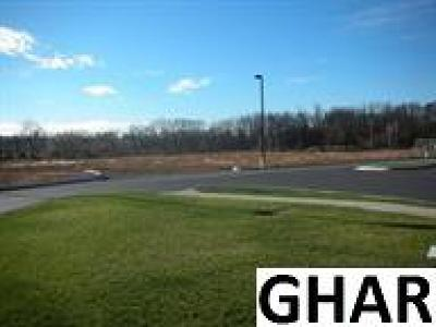 Residential Lots & Land For Sale: 1 Airport Road