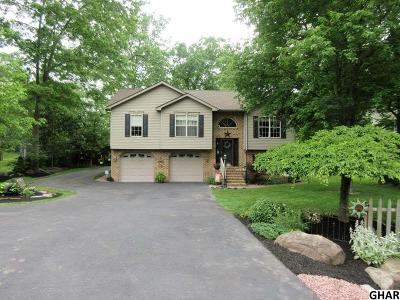Single Family Home For Sale: 229 Lake Meade Drive