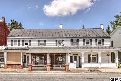 Cumberland County Multi Family Home For Sale: 121-125 E Main St