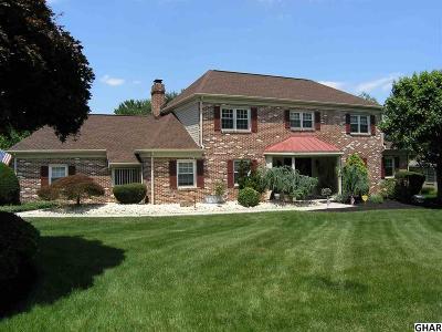 Lemoyne Single Family Home For Sale: 807 Michigan Avenue