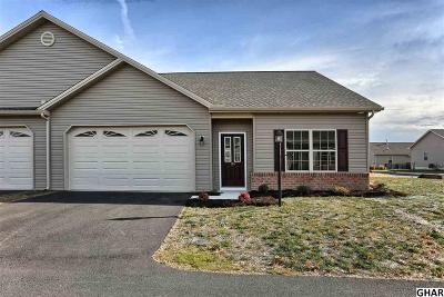Harrisburg Single Family Home For Sale: 107 Eric Drive