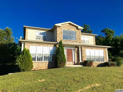 New Cumberland Single Family Home For Sale: 308 Emily Ln.