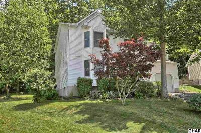 Mount Holly Springs Single Family Home For Sale: 25 Yankee Drive