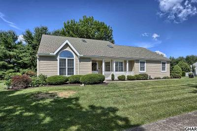 Hershey Single Family Home For Sale: 1085 Hillview Lane