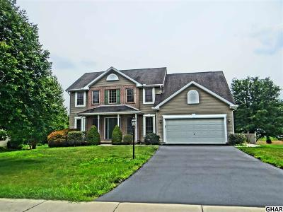 Boiling Springs Single Family Home For Sale: 105 Shirley Lane
