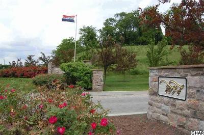 Mechanicsburg Residential Lots & Land For Sale: Lot 206 Braeburn Estates